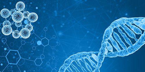 歷史上第一個抗癌靶向藥,得大獎了!