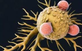 Nat Commun:免疫檢查點抑製劑耐藥性與代謝失衡有關